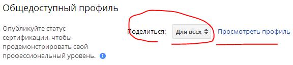 Настройка общедотсупного профиля в Google Partners